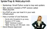 SpiderTrap and WebLabyrinth explained