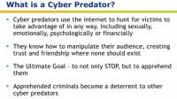 Insight into the concept of cyber predator