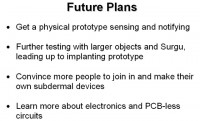 Plans for the immediate future