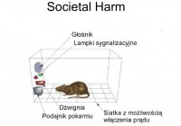 Possible societal harm