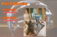 Brain engineering progress