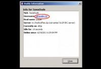 Identity revealing info in IRC
