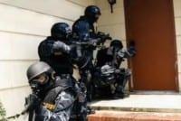 A pretty typical swatting scene