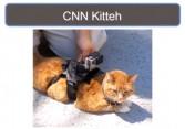 CNN's try