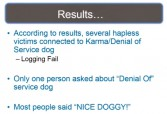 Denial of Service Dog - results