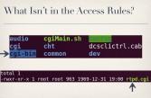 Odd entry for cgi-bin