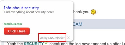 Web pages get stuffed with Ads by DNS Unlocker
