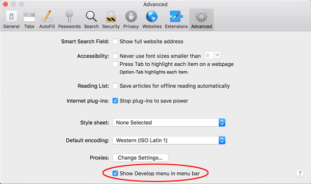 Show Develop menu in menu bar' option
